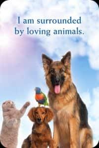 21ik-ben-omringd-met-liefdevolle-dieren
