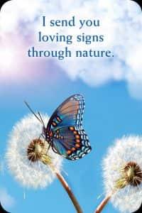 28ik-stuur-je-liefdevolle-signalen-via-de-natuur