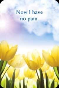 38nu-heb-ik-geen-pijn-meer
