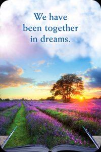 41we-zijn-samen-geweest-in-onze-dromen