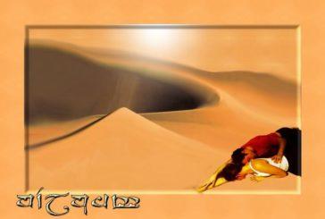 De woestijn (psychologische test)
